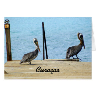 Two pelicans on the pier, Curacao, Photo Note Card