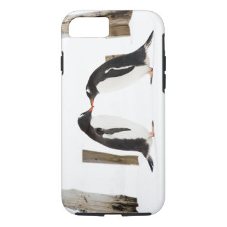 Two Penguins Kissing iPhone 7 tough case