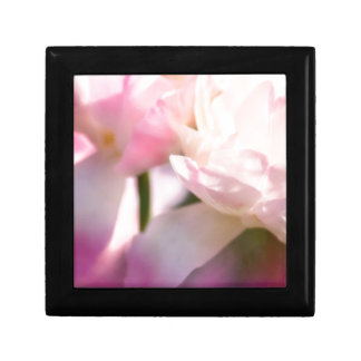 Two Peony Flowering Tulips with Petals Touching Gift Box