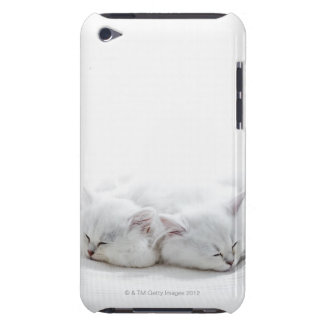 Two Persian Kittens Case-Mate iPod Touch Case