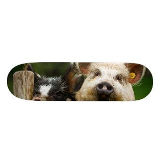 Two pigs - pig farm - pork farms 20 cm skateboard deck