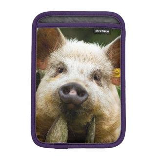 Two pigs - pig farm - pork farms iPad mini sleeve