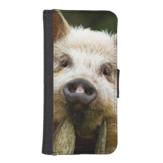 Two pigs - pig farm - pork farms iPhone SE/5/5s wallet case