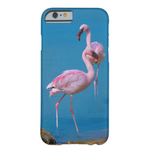 Two Pink Flamingos Barely There iPhone 6 Case