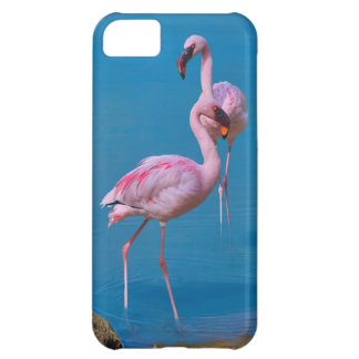 Two Pink Flamingos in Blue Water iPhone 5C Case