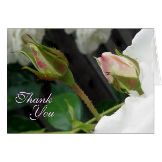 Two Pink Rose Buds Thank You Note Card