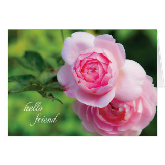 Two Pink Roses, hello friend - Note Card