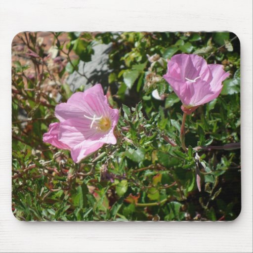 TWO POPPIES MOUSEPADS