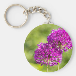 Two purple flowers of ornamental onions together key ring