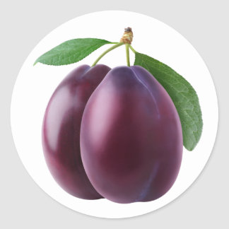 Two purple plums classic round sticker