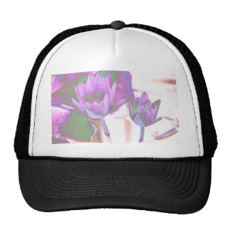 two purple water lilies invert solarized mesh hat