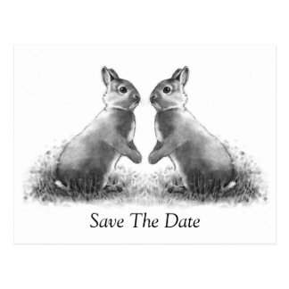 Two Rabbits (Bunnies): Save The Date Postcard