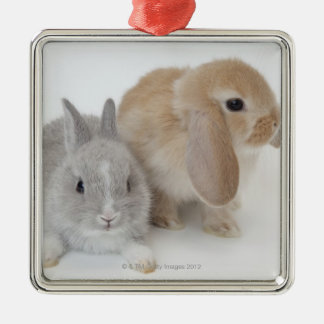 Two rabbits.Netherland Dwarf and Holland Lop. Metal Ornament