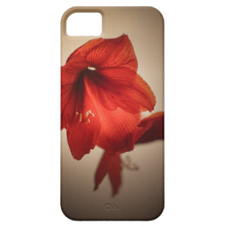 Two red amaryllis flowers barely there iPhone 5 case