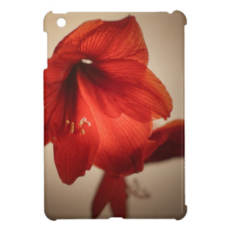 Two red amaryllis flowers iPad mini cover