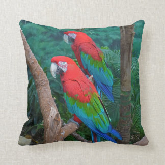 Two Red and Green Winged Macaws Ara Chloropterus Cushion