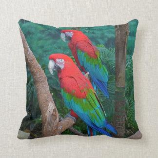 Two Red and Green Winged Macaws Ara Chloropterus Cushions