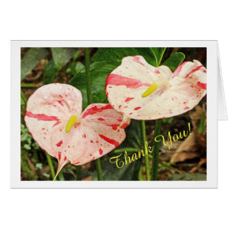 TWO RED AND WHITE ANTHURIUMS/CUSTOMIZABLE THANK YO CARD