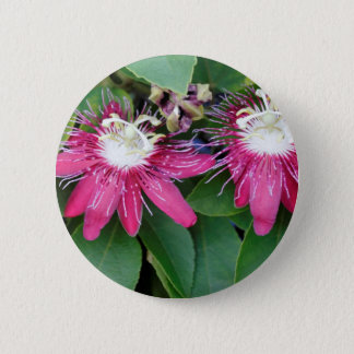 Two Red Passion Flowers Closeup Outdoors in Nature 6 Cm Round Badge