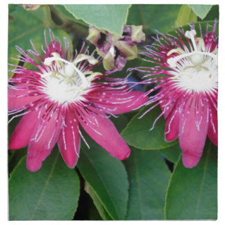 Two Red Passion Flowers Closeup Outdoors in Nature Napkin