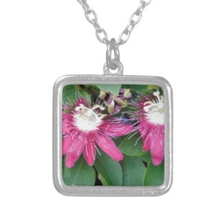 Two Red Passion Flowers Closeup Outdoors in Nature Silver Plated Necklace
