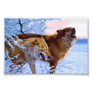 Two red wolves painting art photo