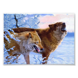 Two red wolves painting photo