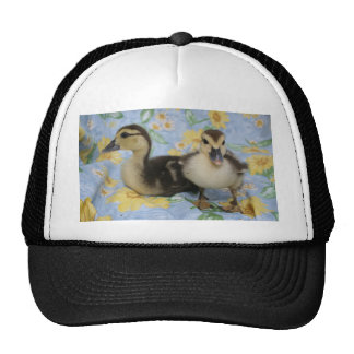 two rouen ducklings against flowered background mesh hats
