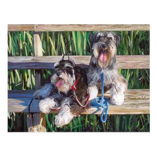 """Two schnauzers on a bench"" dog art post cart Postcard"