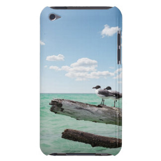 Two seagulls sitting on a dead tree sticking out iPod Case-Mate cases