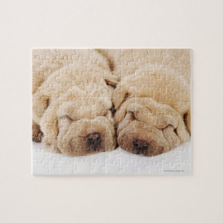 Two Shar Pei puppies sleeping Jigsaw Puzzle