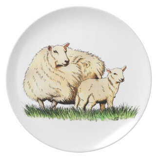 two sheep animal plate