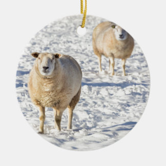 Two sheep standing in snow during winter round ceramic decoration