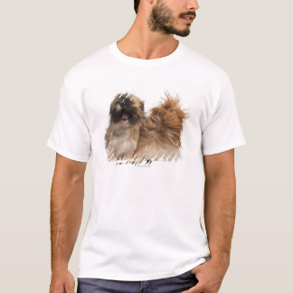 Two Shih-Tzus in the wind T-Shirt