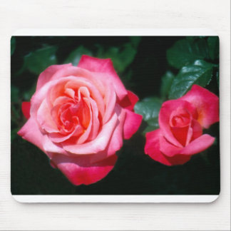 Two Silver Jubilee rose flowers Mouse Pad
