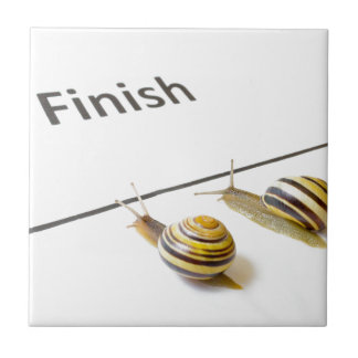 Two snails sliding to finish small square tile