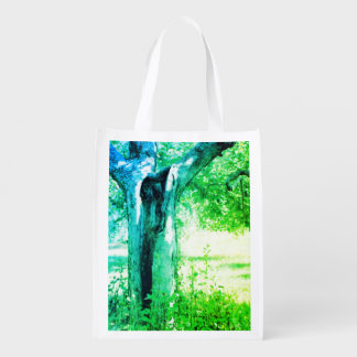 Two Souls Passing Reusable Grocery Bag