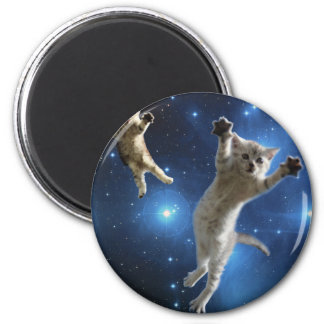 Two Space Cats Floating Around Galaxy Magnet