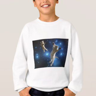 Two Space Cats Floating Around Galaxy Sweatshirt