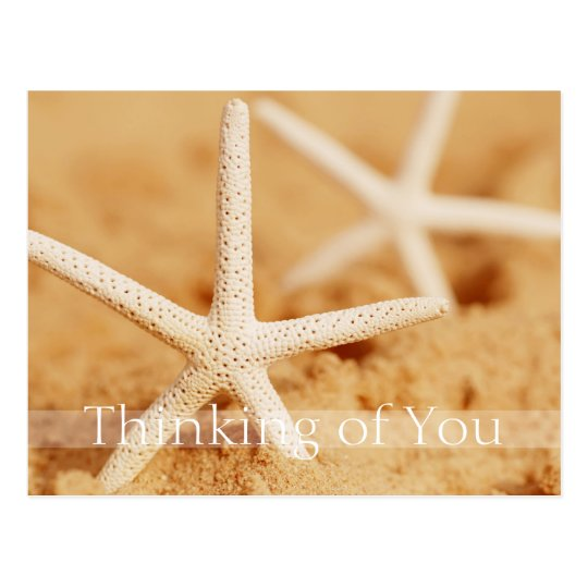 Two Starfish Thinking of You Postcard