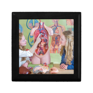 Two students learning model human body in biology. gift box