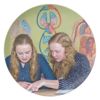 Two students learning with books in biology lesson plate