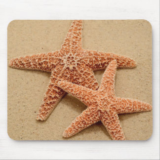 Two Sugar Starfish Mouse Pad