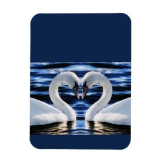 Two swans rectangular photo magnet