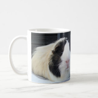 two sweet guinea-pigs coffee mug