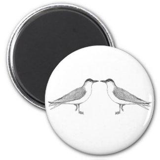Two terns Fridge Magnet