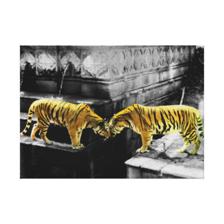 Two Tigers Colour Effect Stretched Canvas Print