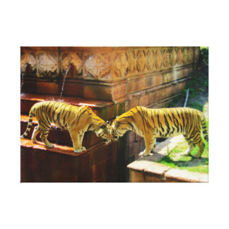 Two Tigers Stretched Canvas Prints