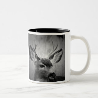 Two-Tone Coffee Mug with photos of deer