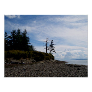 Two Tree Point Poster